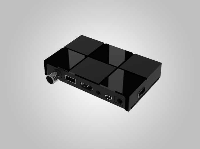 Mini case 1036